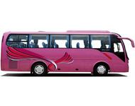 金龙客车XMQ6879Y